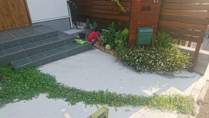 オープン外構の玄関アプローチにヒメイワダレソウと花壇